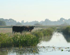 Landbouw en Natuur