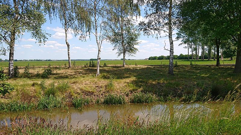Het plangebied voor het zonnepark Eesveen op de Eesveense Hooilanden gezien vanaf Eeserwold.